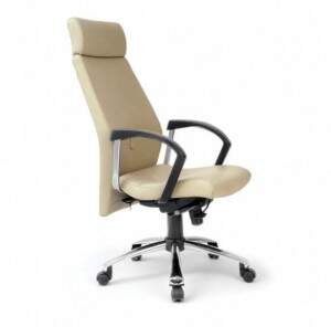 Cadeira presidente Ramsés, cadeira para escritório, cadeira corporativa