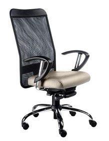 Cadeira Presidente Tela - Cadeira Presidente - Moveis para Escritorio SP