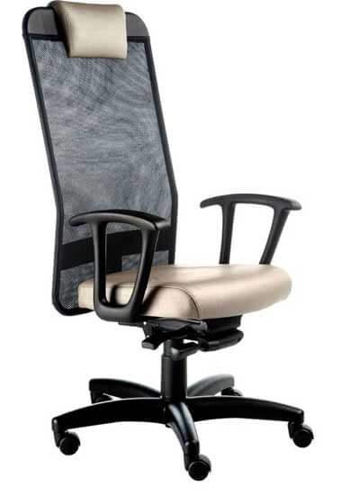 Cadeira Tela - Cadeiras e Poltronas Para Escritório - Moveis para Escritorio SP