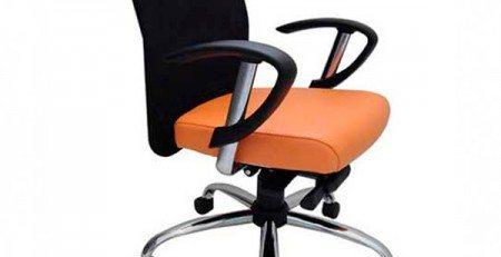 Cadeira Diretor Tela SP, Cadeira Diretor SP